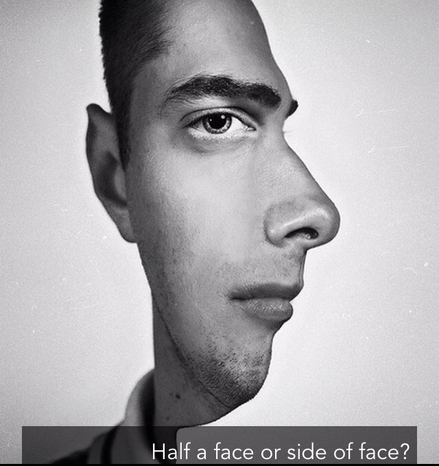 Illusion:Half a face or side of face?