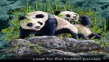Illusion:Look for the hidden pandas.