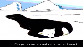 Illusion:Do you see a seal or a polar bear?